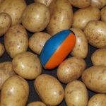 Aardappelkwaliteit analyse producten